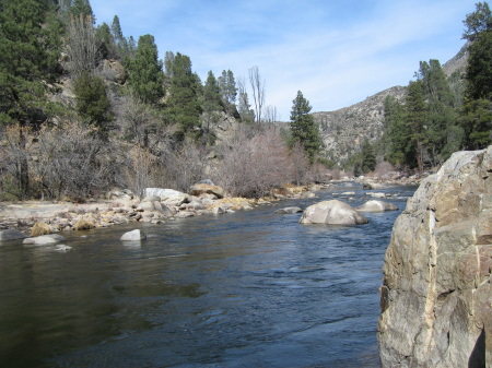 Kern river fishing forumfish report johnsondale bridge area for Kern river fishing report
